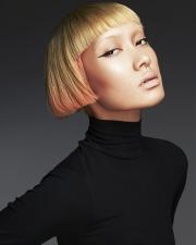 004-podbarvene-vlasy-ken-picto-2015