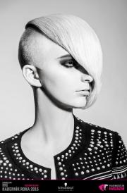 Kaderník roka 2015: Dámsky komerčný účes Čechy (Martin Kováč – Hair Art Design)