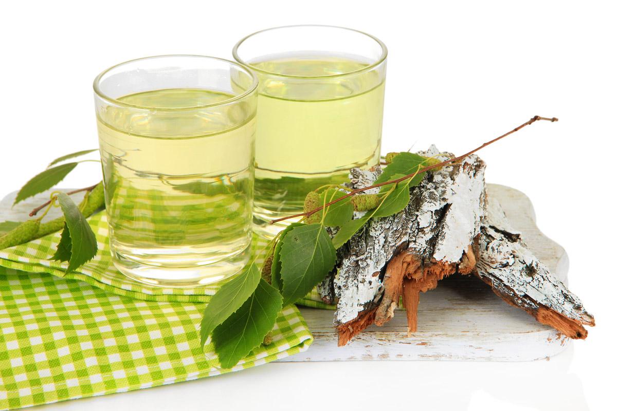 Brezová voda je miazga z brezy, ktorá má mnoho pozitívnych účinkov na naše zdravie, krásu a vlasy. Na konci zimy si ji môžete nazbieraťi sami.