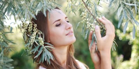 Chystáte Chýba vašim vlasom lesk, nedajú sa rozčesať, sú tvrdé, máte lupiny, alebo vám vlasy nerastú? Vieme, ktoré byliny a ingrediencie vaše problémy s vlassmi vyriešia!sa ošetrovať svoje vlasy prírodnými prostriedkami? Predstavíme vám byliny pre rôzne typy vlasov – pre suché vlasy, pre normálne vlasy i pre mastné vlasy.