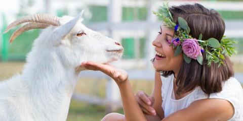 Kozie mlieko ako elixír krásy vie urobiť krajšími aj vaše vlasy. Zabraňuje ich lámaniu, štiepeniu končekom aj vypadávaniu.