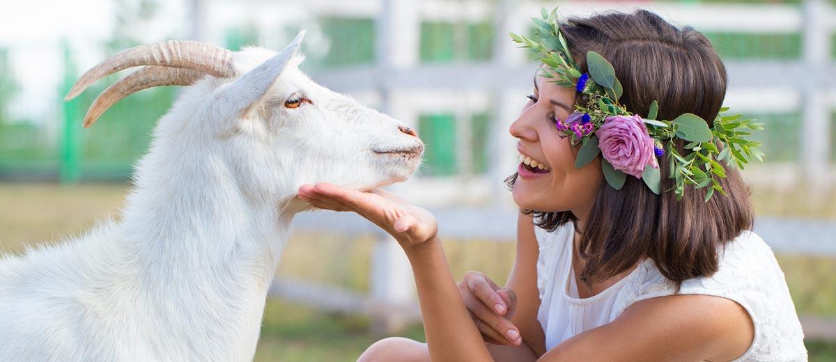 Kozie mlieko je elixírom nielen pre vaše zdravie, ale aj pre krásne vlasy.