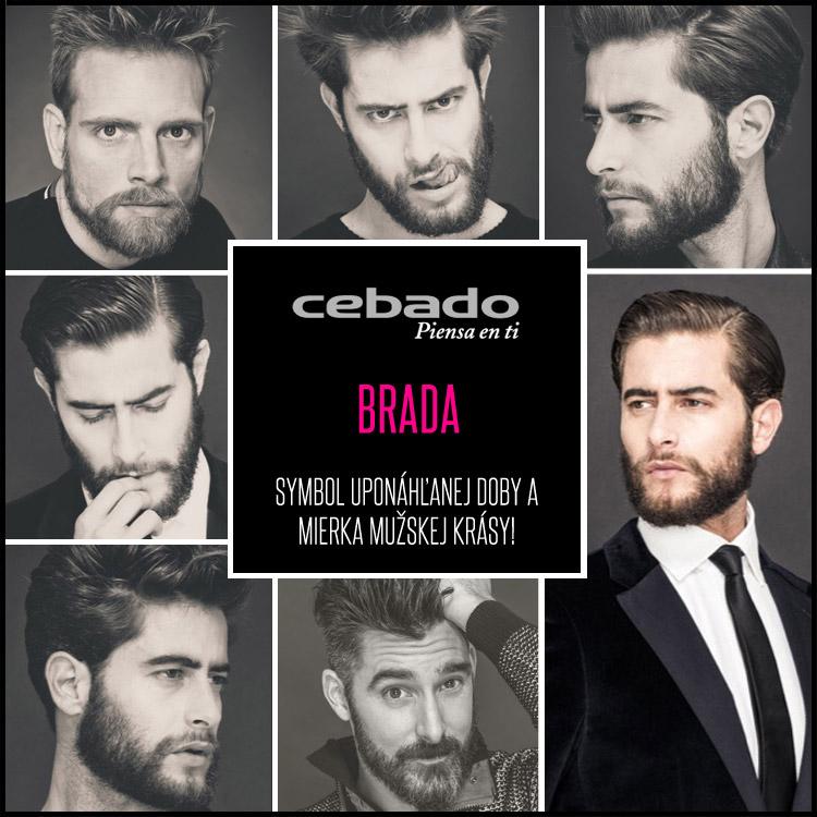 Brada – symbol uponáhľanej doby a mierka mužskej krásy!