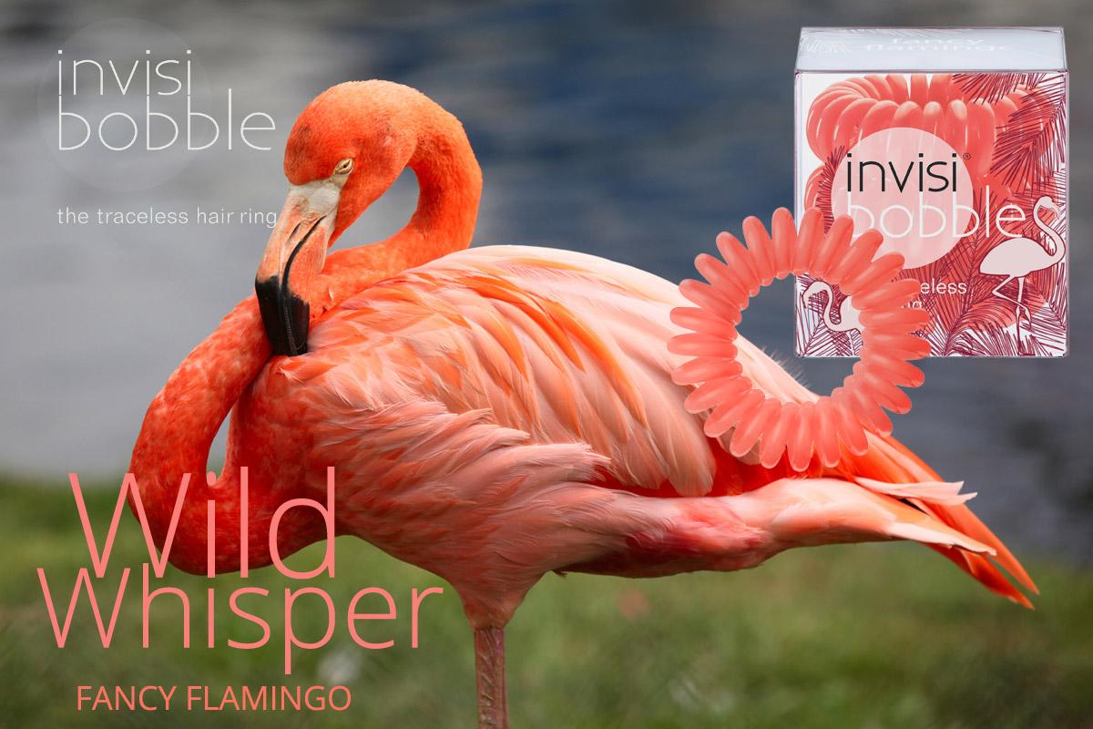Fancy Flamingo – Invisibobble gumičky Wild Whisper – limitovaná kolekcia 2015 v efektnej farbe plameniaka