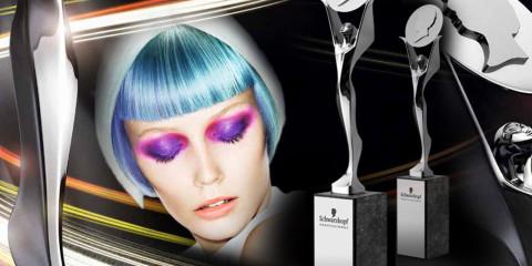 Nezávislá kadernícka súťaž Czech and Slovak Hairdressing Awards 2015, čiže aj 14. ročník súťaže Kaderník roka práve štartuje!
