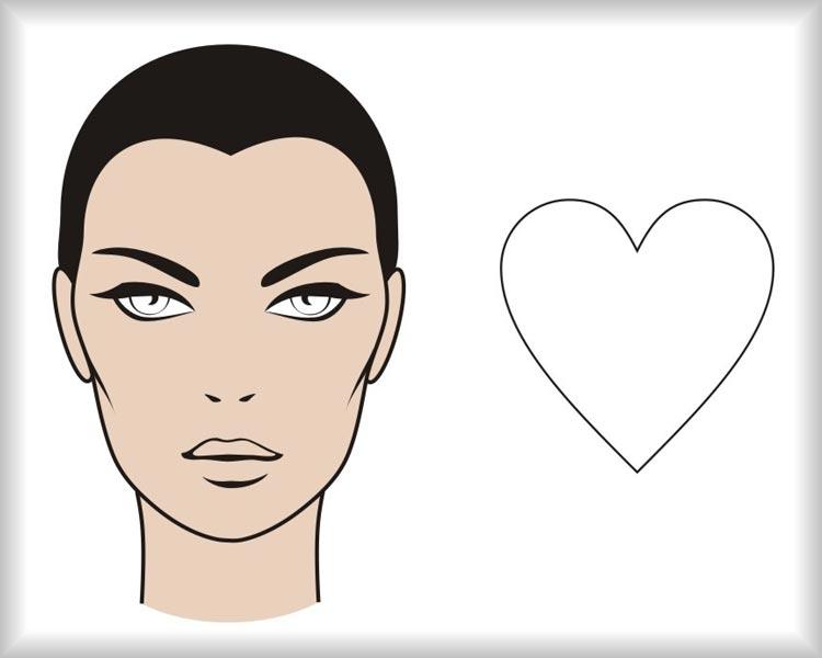 Srdcovitá tvár: tvár vyzerá ako obrátený trojuholník a od čela k brade sa zužuje pod výrazným uhlom. Kúty na čele môžu byť výraznejšie s vlasmi rastúcimi vyššie než uprostred čela.