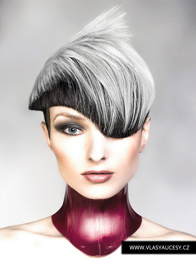 Šedivé vlasy v účese od Robert Masciave (BHA 2016): Šedá je farba roka 2016 pre vlasy. Pozrite sa, ako sivé vlasy v dvoch odtieňoch dokážu poslúžiť ako veľmi zaujímavé farbenie do strihu.