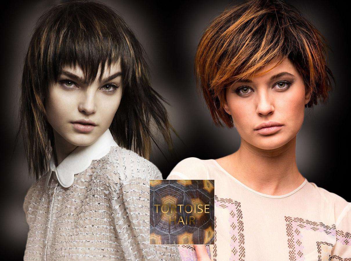 Farby pre polodlhé vlasy – trendy jeseň/zima 2015/2016: Korytnačie vlasy – ďalšia variácia pre hnedý melír.