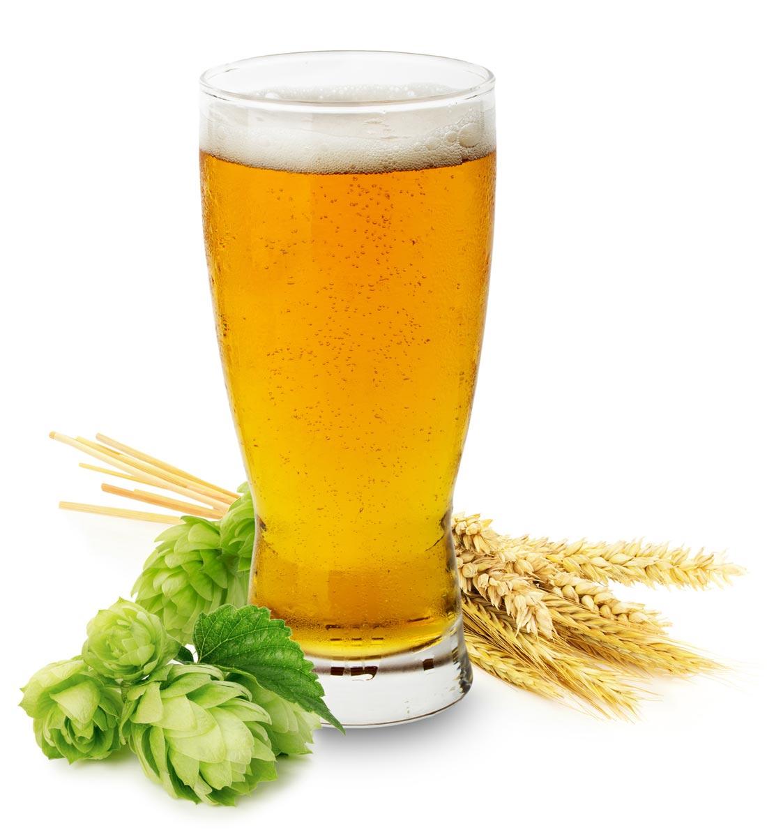 Pivo pre vlasy poslúži ako tužidlo aj na zvýšenie lesku vlasov.