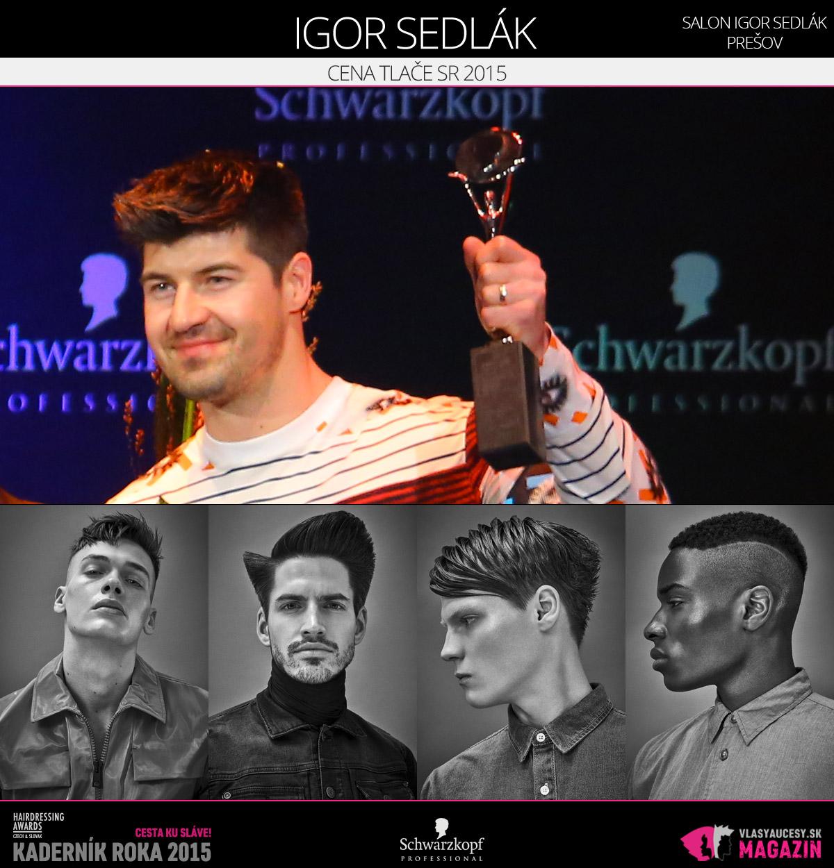 Víťazom v kategórii Cena tlače SR Czech and Slovak Hairdressing Awards 2015 je Igor Sedlák zo Salónu Igor Sedlák Prešov.